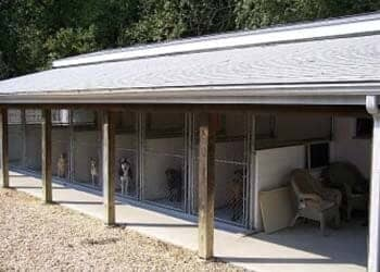Dog Kennel in Chesterfield, NJ